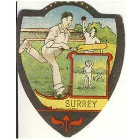 "BAINES ""SURREY"" trade card"